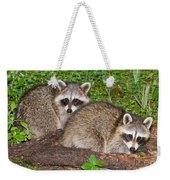 Raccoons Weekender Tote Bag