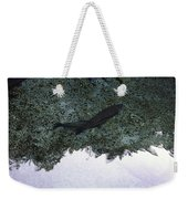 Rainbow Trout Weekender Tote Bag by Les Cunliffe