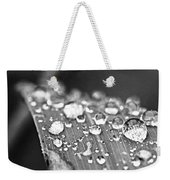Raindrops On Grass Blade Weekender Tote Bag