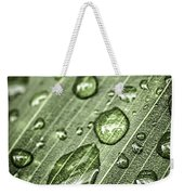 Raindrops On Green Leaf Weekender Tote Bag by Elena Elisseeva