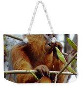 Red Colobus Monkey Weekender Tote Bag