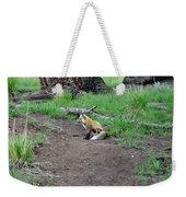 Red Fox In Yellowstone Weekender Tote Bag