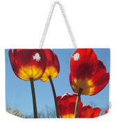 Red Tulips With Blue Sky Background Weekender Tote Bag