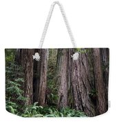 Redwood Weekender Tote Bag