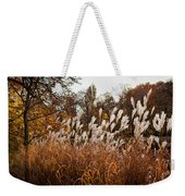 Reeds Highlighted By The Sun Weekender Tote Bag