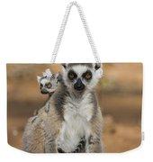 Ring-tailed Lemur And Baby Madagascar Weekender Tote Bag
