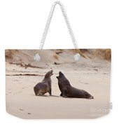 Rough Courtship Of Male And Female Hookers Sealions Weekender Tote Bag