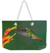 Rufous-tailed Hummer Weekender Tote Bag