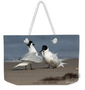 Sandwich Tern Bringing Fish To Its Mate Weekender Tote Bag