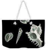 Sea Shell X-ray Weekender Tote Bag