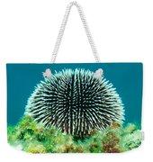 Sea Urchin Weekender Tote Bag
