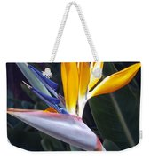 Seaport Bird Of Paradise Weekender Tote Bag