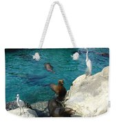 Seaworld Sea Lions Weekender Tote Bag