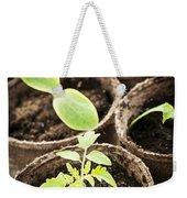 Seedlings Growing In Peat Moss Pots Weekender Tote Bag