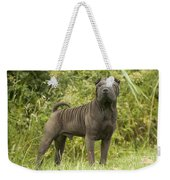 Shar Pei Dog Weekender Tote Bag