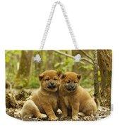 Shiba Inu Puppies Weekender Tote Bag