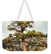 Sierra Landscape Weekender Tote Bag