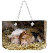 Sleeping Hogs  Weekender Tote Bag