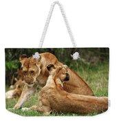 Sociable Lions   Weekender Tote Bag