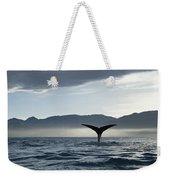 Sperm Whale Physeter Macrocephalus Weekender Tote Bag