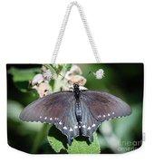 Spicebush Swallowtail Papilio Troilus Weekender Tote Bag