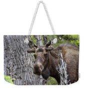 Spring Bull Weekender Tote Bag