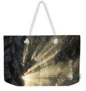 Sunbeam Weekender Tote Bag