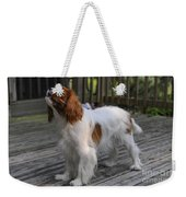 Sweet Daisy Weekender Tote Bag