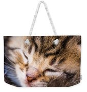 Sweet Small Kitten  Weekender Tote Bag