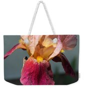 Tall Bearded Iris Named Indian Chief Weekender Tote Bag