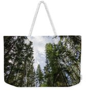 Tall Spruce Trees Weekender Tote Bag