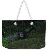 Tayra Costa Rica Animals Zoo Habitat Indigenous Population Mixing With Travellers Enjoying And Being Weekender Tote Bag