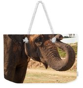 Temple Elephants Maharaja's Palace India Mysore Weekender Tote Bag