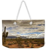 The Desert Southwest  Weekender Tote Bag