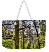 The Forest Path Weekender Tote Bag by David Pyatt