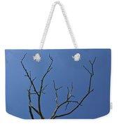 The Lightning Tree Weekender Tote Bag