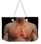 The Respiratory And Cardiovascular Weekender Tote Bag