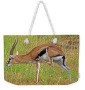 Thomson's Gazelle Weekender Tote Bag