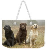 Three Kinds Of Labradors Weekender Tote Bag