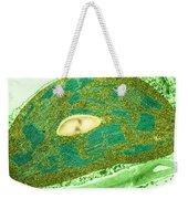 Tomato Chloroplast, Tem Weekender Tote Bag