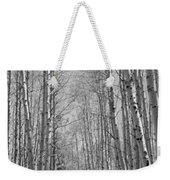 Trees Along A Road, Log Cabin Gold Weekender Tote Bag