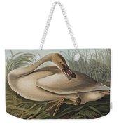 Trumpeter Swan Weekender Tote Bag
