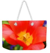 Tulips At Thanksgiving Point - 28 Weekender Tote Bag