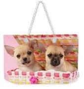 Two Chihuahuas Weekender Tote Bag by Greg Cuddiford