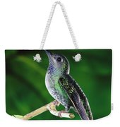 Violet Sabre-wing Hummingbird Weekender Tote Bag by Michael and Patricia Fogden
