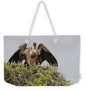 Vultures With Full Crops Weekender Tote Bag