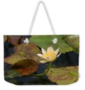 Water Lily 25 Weekender Tote Bag