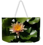 Exotic Colors - A Soft Coral Waterlily Weekender Tote Bag