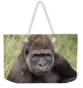 Western Lowland Gorilla Young Male Weekender Tote Bag