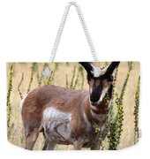 Where The Antelope Play Weekender Tote Bag